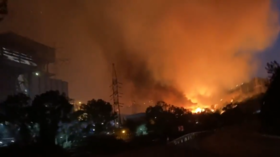 Turkish power plant EVACUATED as wildfire inferno bears down on facility (VIDEOS)