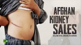 Afghan Kidney Sales