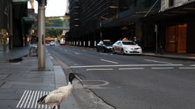 Sydney may call in EXTRA troops to enforce lockdown as Australia's capital extends restrictions after ONE case reported