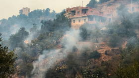 Algerian prosecutor launches investigation into mob that murdered man accused of starting deadly wildfires