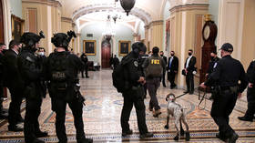 Capitol rioter accused of 'egregiously' violating release terms by accessing internet & watching symposium on 'election fraud'