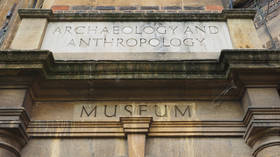 'World class joke': Cambridge university museum to install signage explaining 'whiteness' of Greek & Roman plaster-cast sculptures