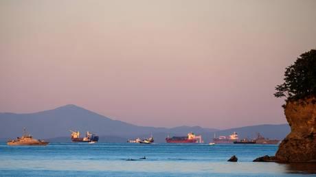 Russia to build new cargo port in Vladivostok to boost development of Far East