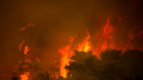 A wildfire burns a forest in the village of Villa, Northwestern Athens, on August 18, 2021 © ANGELOS TZORTZINIS / AFP