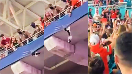 A cat had a lucky escape during an American football game © Twitter / barstoolsports © Twitter / lariska_prgitay