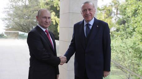 Russian President Vladimir Putin and Turkish counterpart Recep Tayyip Erdogan shake hands during their meeting in Sochi. © Reuters / Vladimir Smirnov