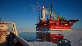 Arctic has enough reserves to supply Russia for centuries – Russian official