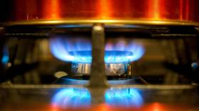 European gas prices hit another record high on low supply