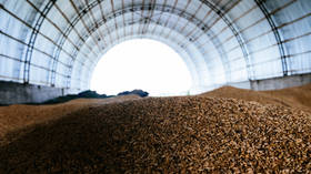 Russia resumes wheat exports to Algeria after 5yr break