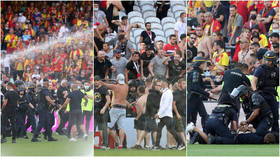 Turf wars: Riot police confront thugs on pitch as violent chaos breaks out at top-flight football match in France again (VIDEO)