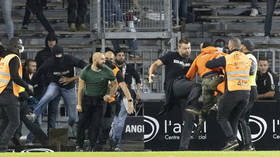'Masturbation' in the stands & trainers punching fans: Violent France is the shame of Europe
