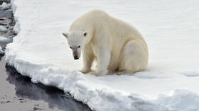 Arctic oil & gas production reportedly booming despite climate concerns