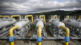 Russia must pay Ukraine to transit gas even after Nord Stream 2 pipeline operational, triumphant German SPD leader Scholz declares
