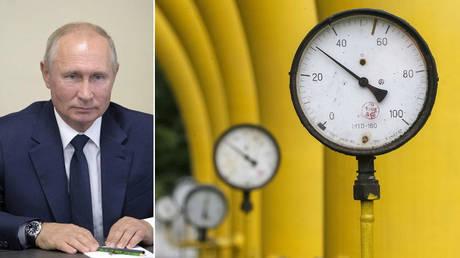(L) Vladimir Putin © Sputnik / Alexei Druzhinin / Kremlin via REUTERS; (R) © REUTERS / Gleb Garanich