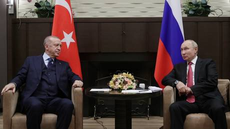 FILE PHOTO. Russian President Vladimir Putin and Turkish President Recep Tayyip Erdogan attend a meeting at the Bocharov Ruchei state residence in Sochi, Russia.