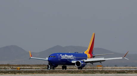 FILE PHOTO: A Southwest Airline Boeing 737 MAX 8 aircraft lands at Victorville Airport in Victorville, California, March 26, 2019 © Reuters / Mike Blake