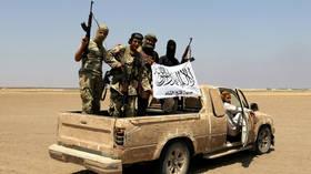 Pentagon claims drone strike killed Al-Qaeda terrorist in Syria's Idlib, emphasizes 'no indications of civilian casualties'