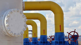 Kiev is unreliable partner for transporting gas to West, top Russian lawmaker argues amid row over decision to circumvent Ukraine