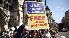 Key witness in FBI case against Assange held in custody to stop his 'crime spree' in Iceland – media