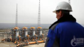 Russia supplying additional gas to Europe using all available routes – Gazprom Export