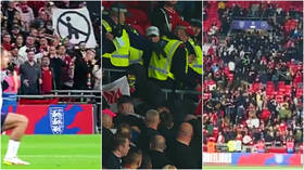 Baton-wielding cops and fans clash in violent scenes after 'racially-aggravated incident' during England game with Hungary (VIDEO)