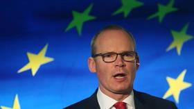 EU to propose removing most Northern Ireland checks in 'very genuine effort' to address concerns, Irish FM says