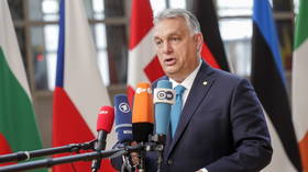 'Not in treaty': Hungary's Orban sides with Poland, rejects EU law primacy ahead of bloc's summit