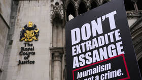 Assange 'wincing in pain' on court video link as IFJ takes full page ad in Times calling for his 'immediate release'