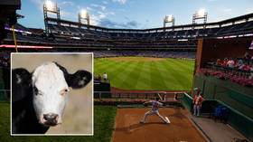 'This can't be real': MLB fans in hysterics as animal rights watchdog PETA deems the term 'bullpen' insensitive to cows