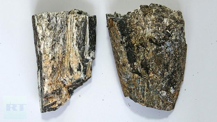 Southern mammoth tusk fragments. Photo by Viktor Kotlyarov