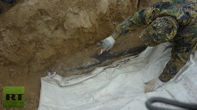 Mammoth remains discovered. Photo by Viktor Kotlyarov
