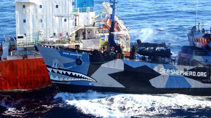 Sea Shepherd anti-whalers now labeled 'pirates' by US fed court
