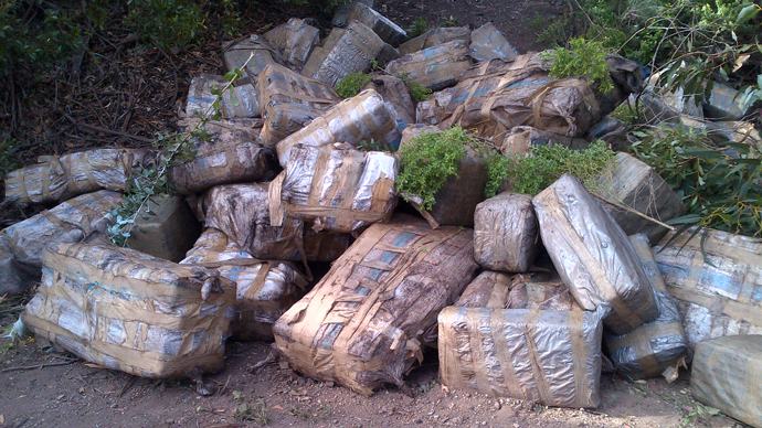 Hot spot: Marijuana worth $4mln found on California beach