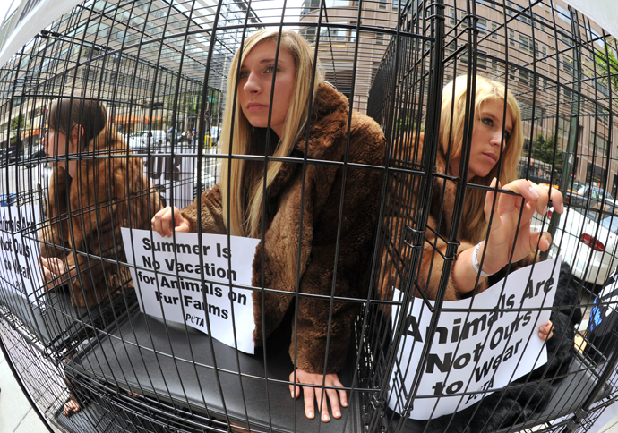 Animal rights activists in fur coats sitting in cages during a PETA(People for the Ethical Treatment of Animals) demostration in Washington, DC (AFP Photo / Karen Blaier)