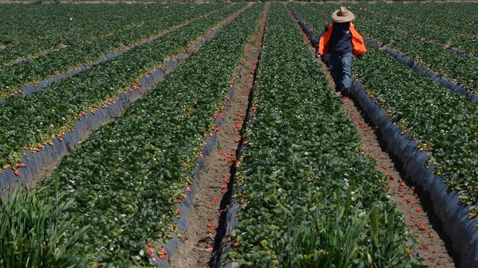 'Monsanto Protection Act' slips silently through US Congress