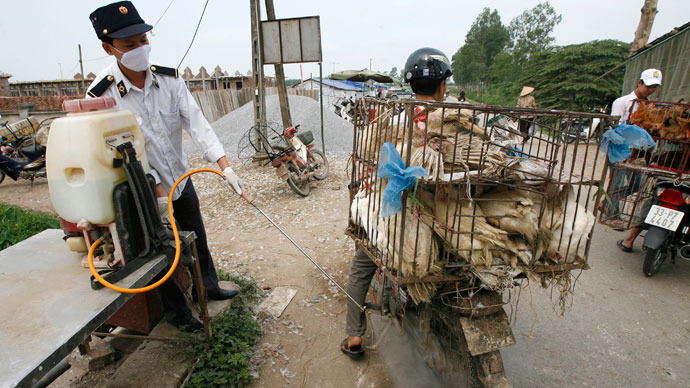 'Hard to track, hard to stop': Unusual bird flu strain kills 4 people in China