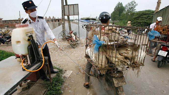 'Hard to track, hard to stop': Unusual bird flu strain kills 4 people in China