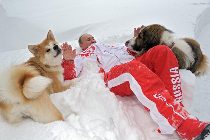 President Vladimir Putin and his dogs, Buffy the Bulgarian Shepherd and Yume the Akita-Inu, walk in the Moscow Region (RIA Novosti / Alexsey Druginyn)