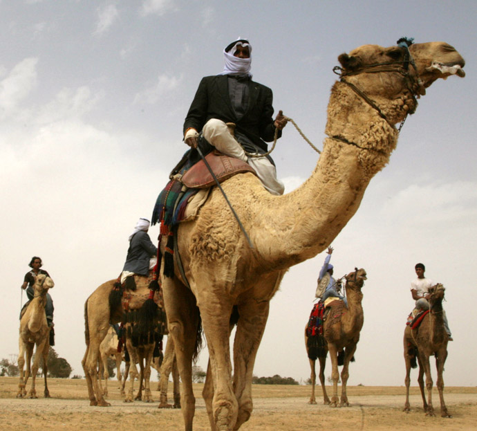 Israeli Bedouins ride camels during a Bedouin folklore festival, 28 April 2007, in the Negev desert near the southern Israeli town of Arad. (AFP Photo)