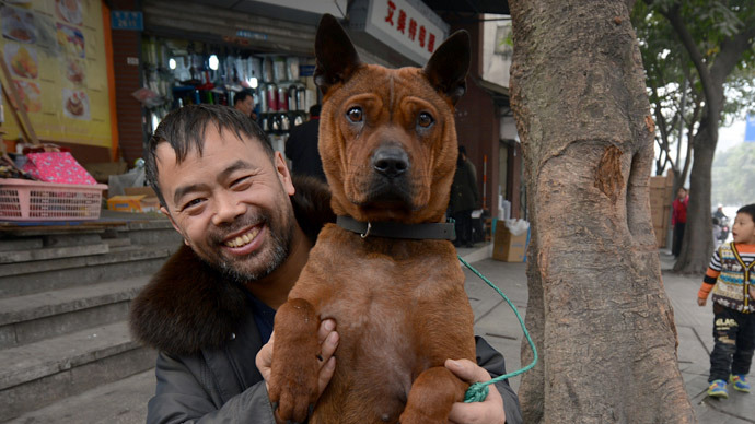 Animal instincts: Chinese city uses dogs to predict quakes
