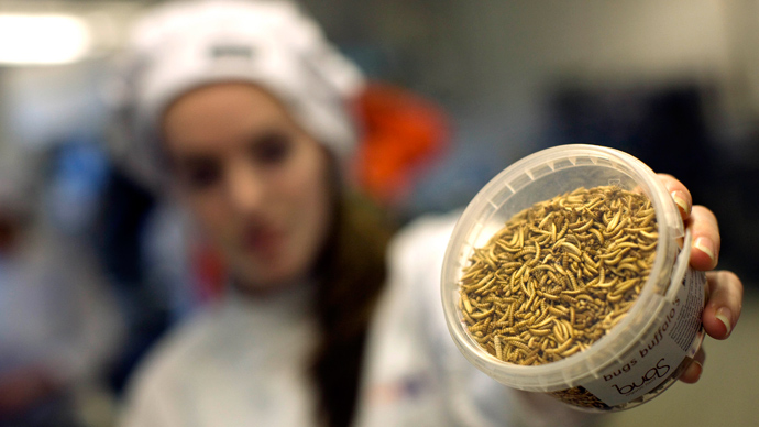 Hungry? Lacking protein? Eat an insect, UN says