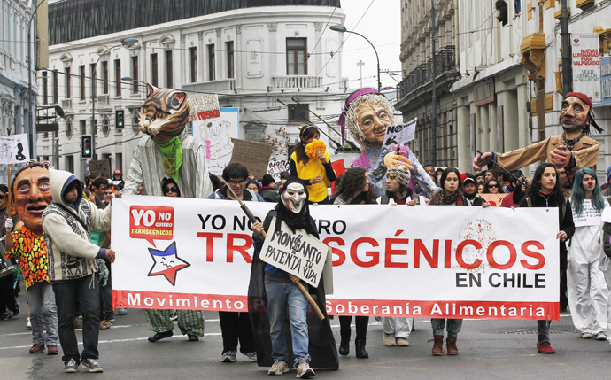 Demonstrators hold banners during a rally against U.S.-based Monsanto Co. and genetically modified organisms (GMO), in Valparaiso city May 25, 2013. (Reuters / Eliseo Fernandez)