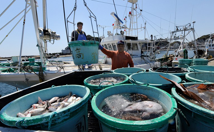 Fishermen unload their catch at the Hirakata fish market in Kitaibaraki, Ibaraki prefecture, south of the stricken Fukushima daiichi nuclear power plant number 1. (AFP Photo / Toru Yamanaka)