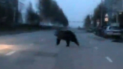 Dashcam captures Russian 'supercop' running down chased car on foot (VIDEO)