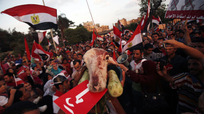"A protester opposing Egyptian President Mohamed Morsi shouts slogans as he holds a lamb's head during a demonstration in front of the Presidential Palace ""Qasr Al Quba"" in Cairo July 2, 2013.(Reuters / Amr Abdallah Dalsh)"