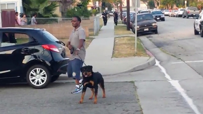 California man whose dog was killed by cops faces up to five years in prison