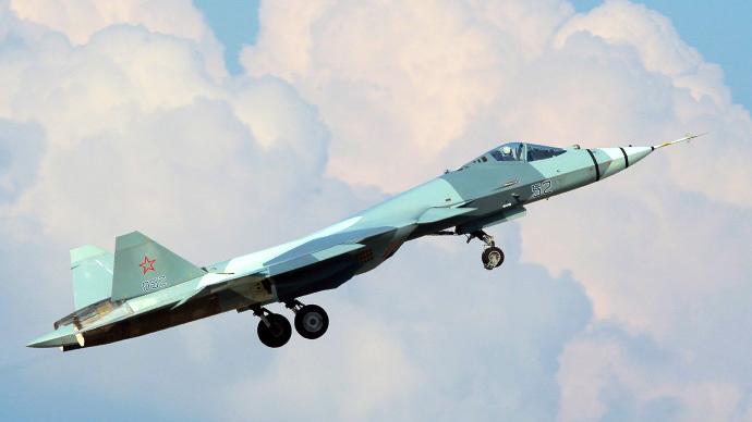 T-50 fighter (RIA Novosti / Vitaliy Belousov)