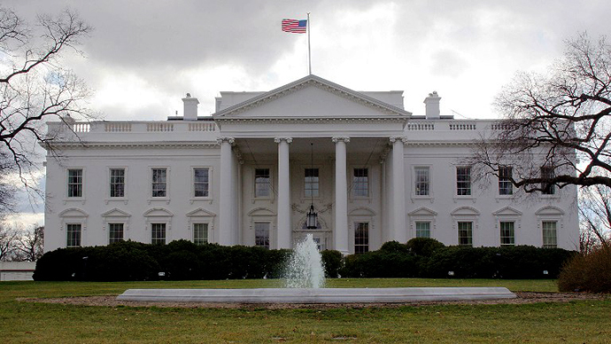 US ready to decide on military action in Syria 'on our own' - White House