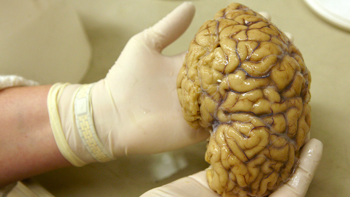 Stanford neuroscientist: 'We're now able to eavesdrop on the brain in real life'