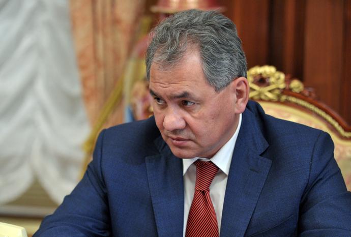 Russian Defense Minister Sergey Shoigu (RIA Novosti / Aleksey Nikolsky)